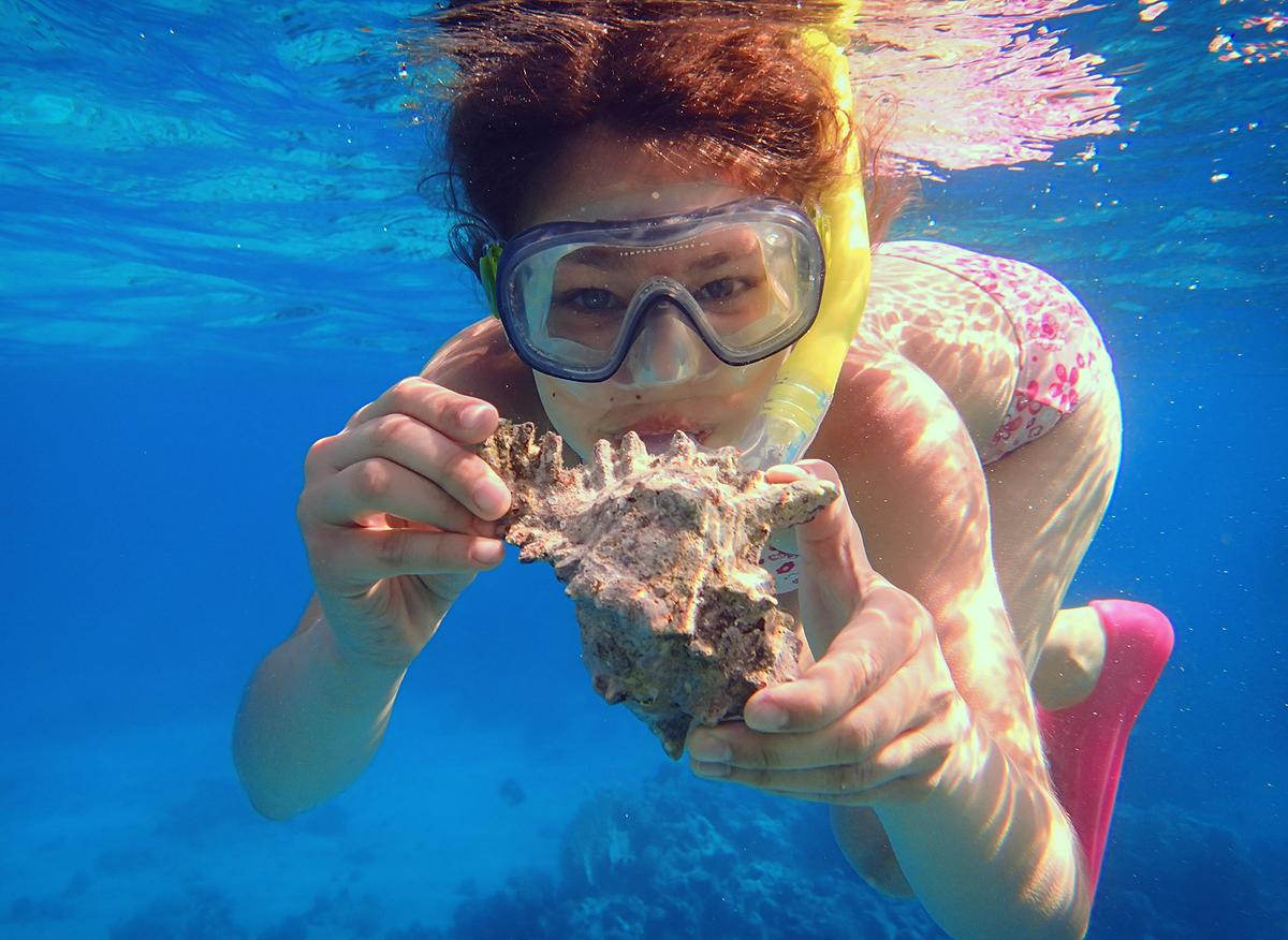 Сокровища синего моря. Делай жизнь ярче вместе с DryDry