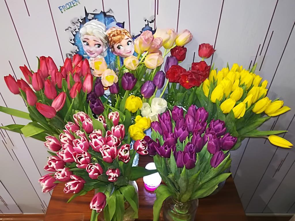 Весенние цветы . Блиц: весенние цветы