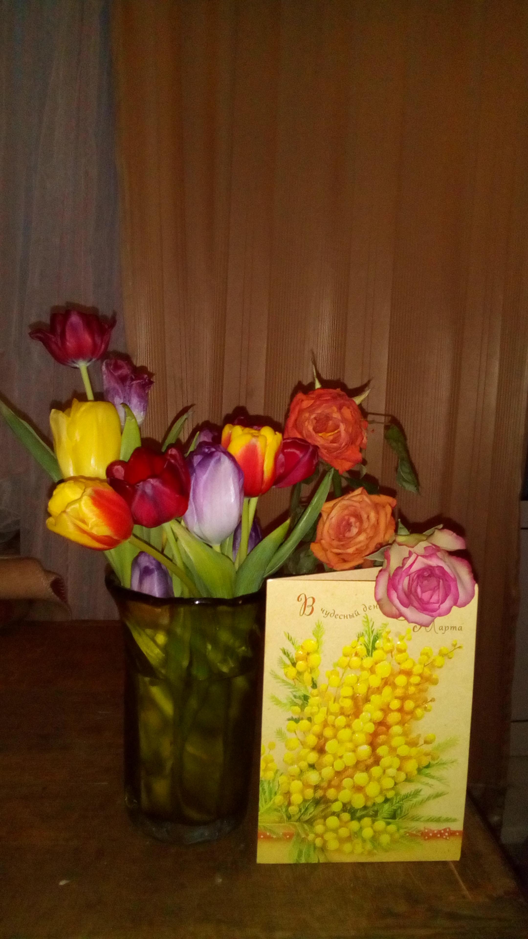 Первые подаренные цветы в начало весны. Блиц: весенние цветы