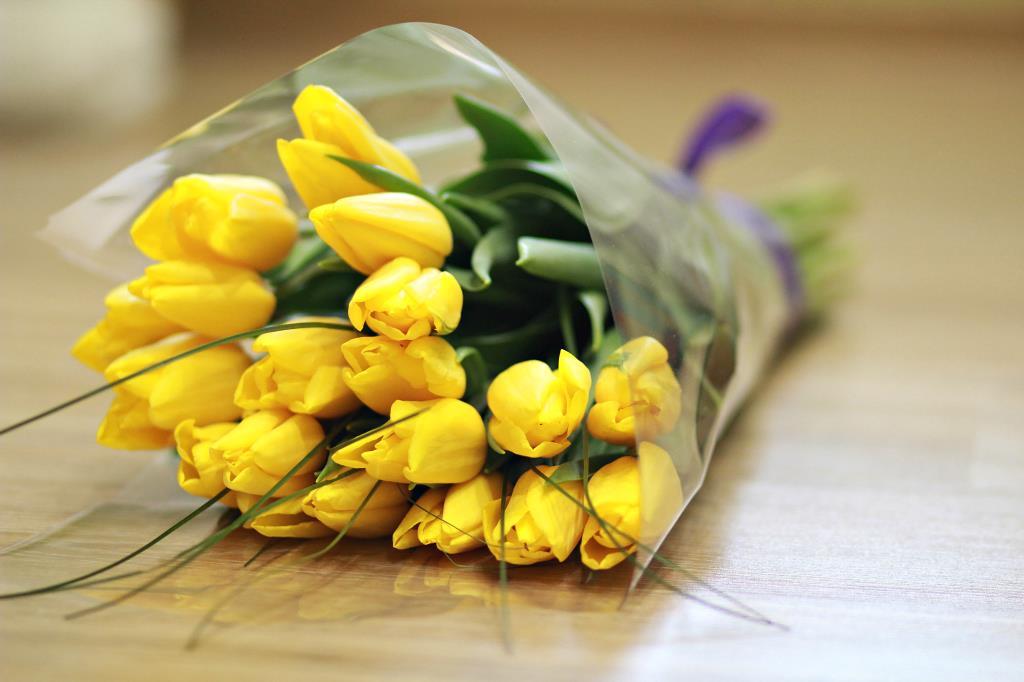 Тюльпаны - дивные цветы!. Блиц: весенние цветы
