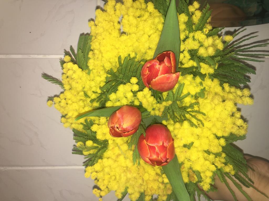 Весеннее настроение. Блиц: весенние цветы