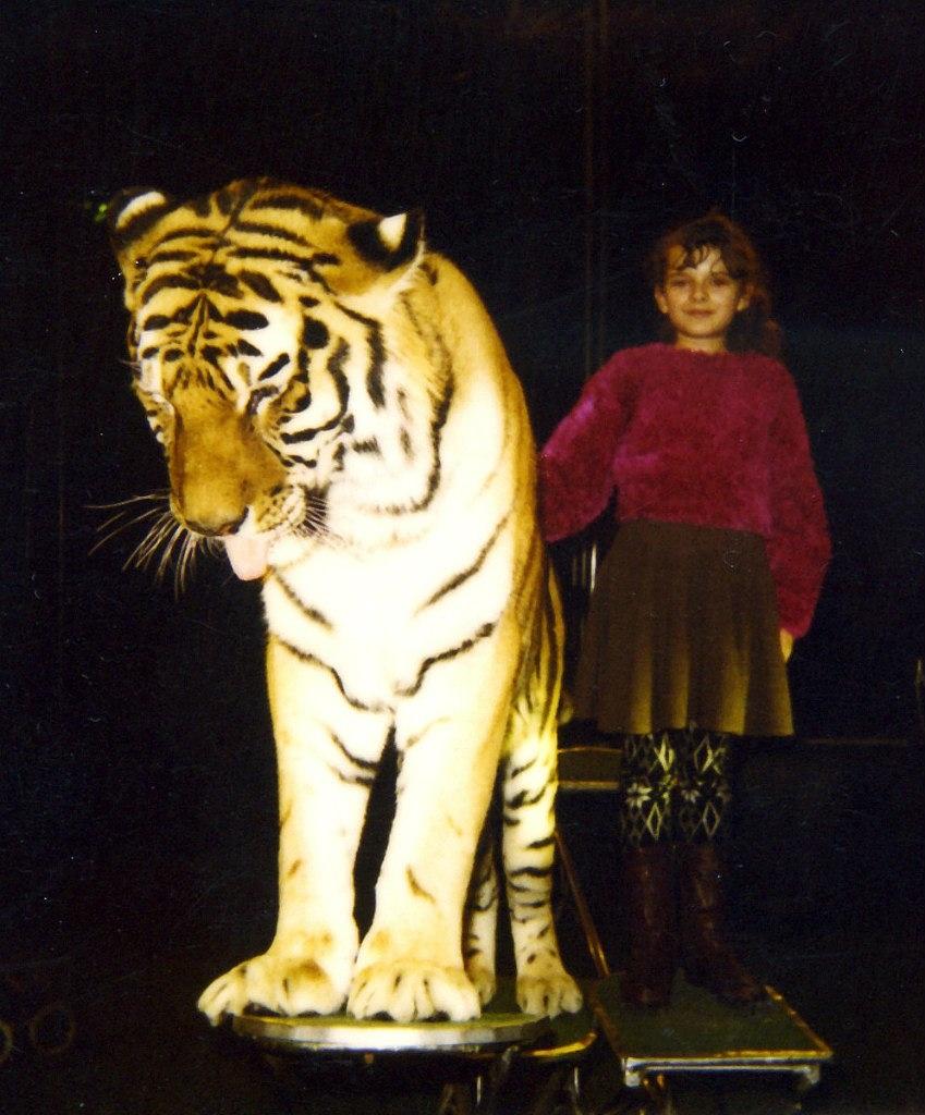 Тигра!!!. Делай жизнь ярче вместе с DryDry