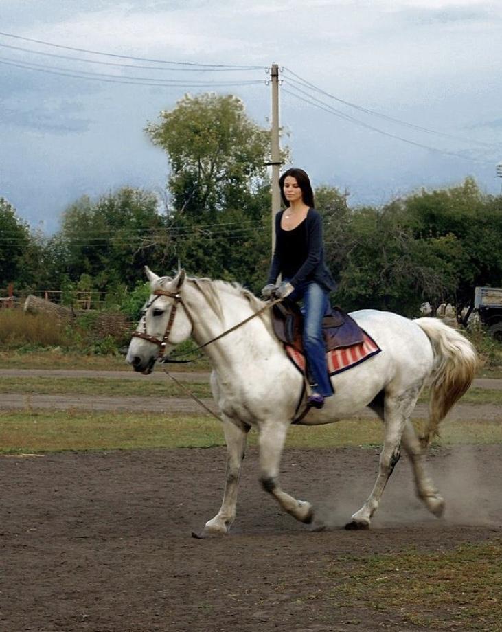 Столько драйва,как в лошадях,не встречала никогда.. Делай жизнь ярче вместе с DryDry