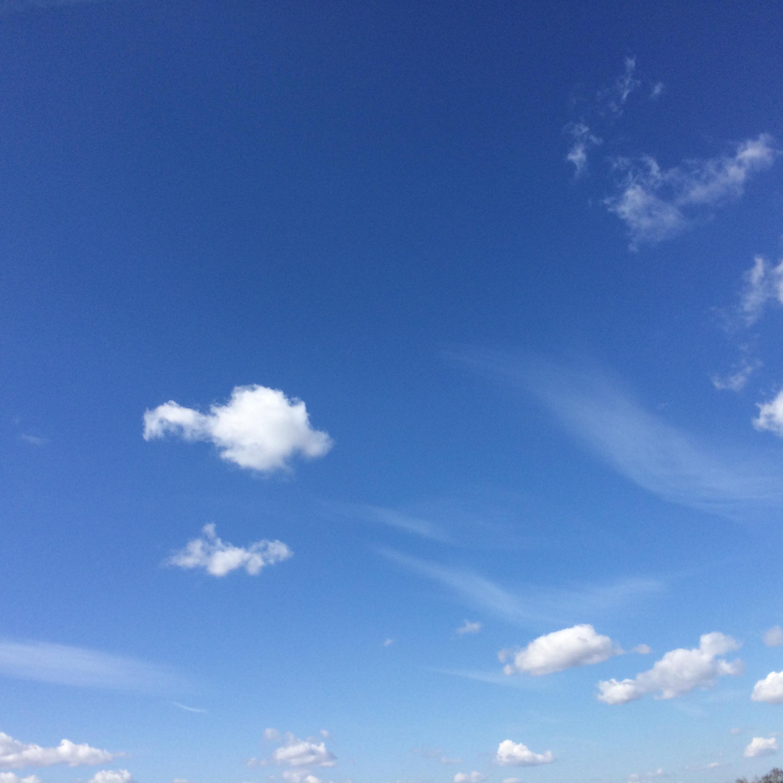 Облака белогривые ...... Блиц: небо в облаках