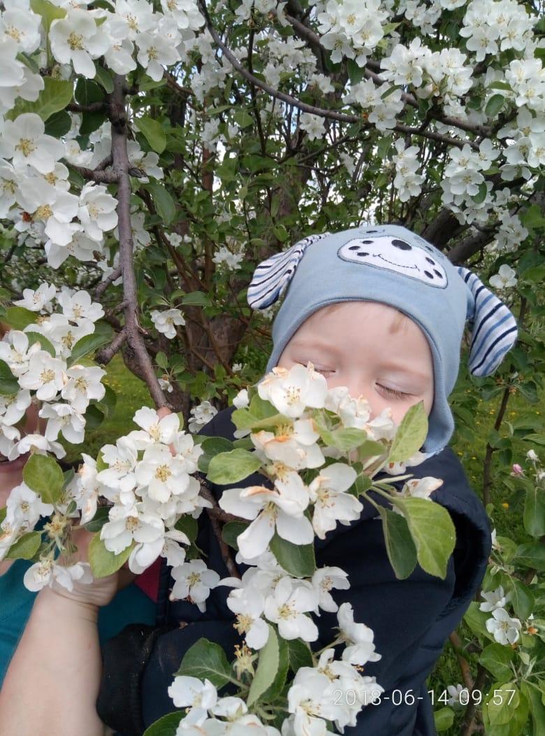 когда яблоня в цвету.. Весеннее настроение