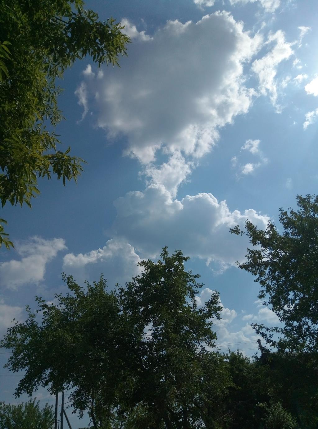 любовь в небе. Блиц: небо в облаках