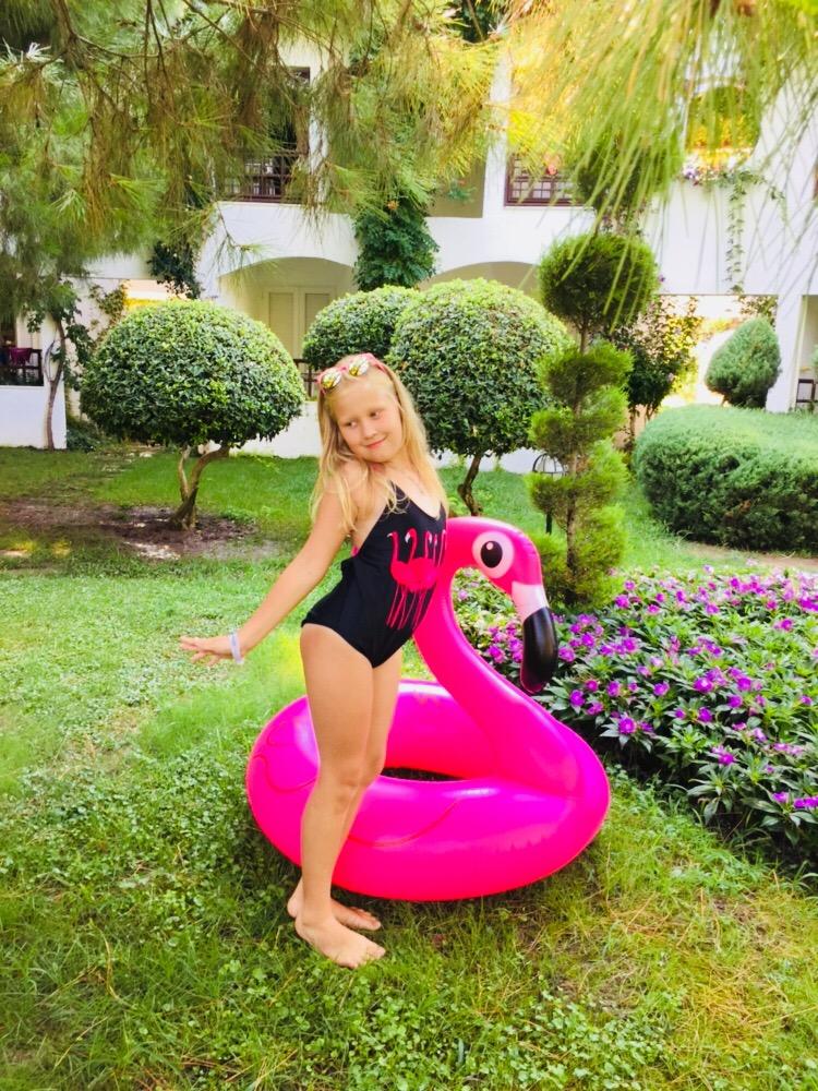 Моё фламинговое лето!!!!. Наше лето