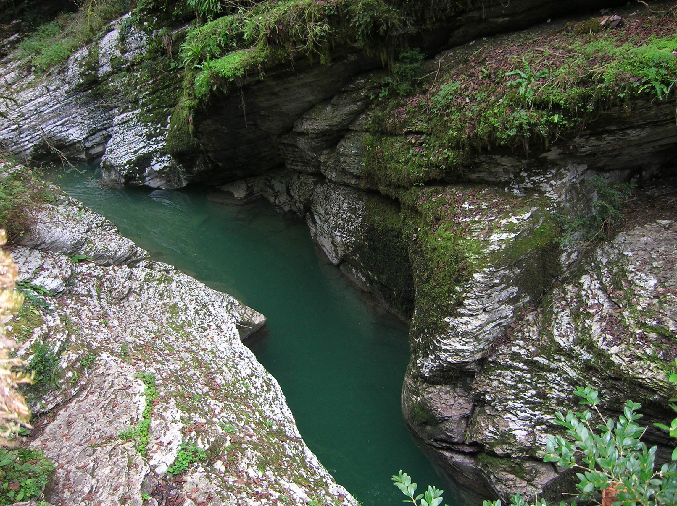 Каньон реки Псахо. Блиц: все зеленое