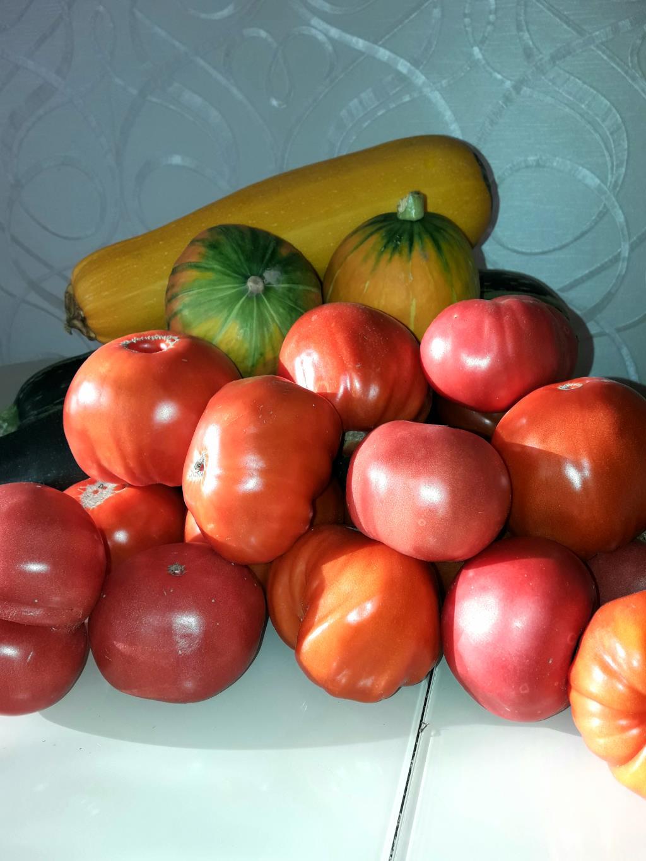Овощи с грядки. Блиц: сбор урожая