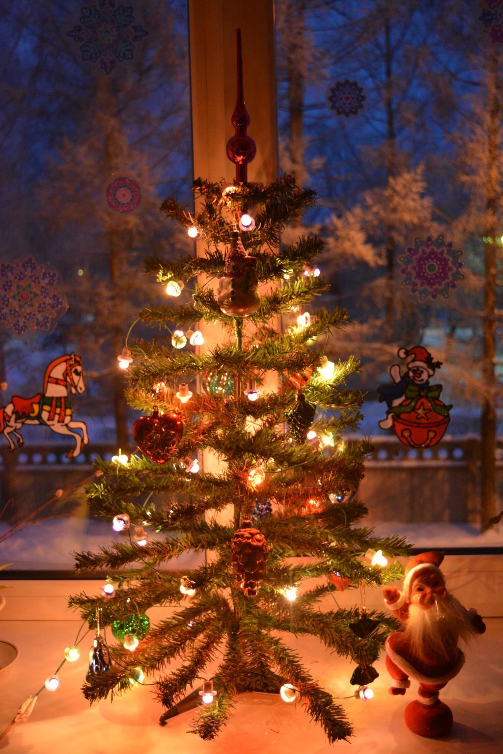 Уютный Новый год. Блиц: Ну и елка!