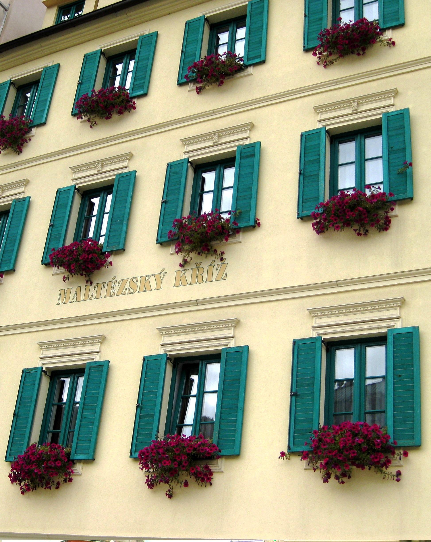 Окна в Праге. Блиц: окна