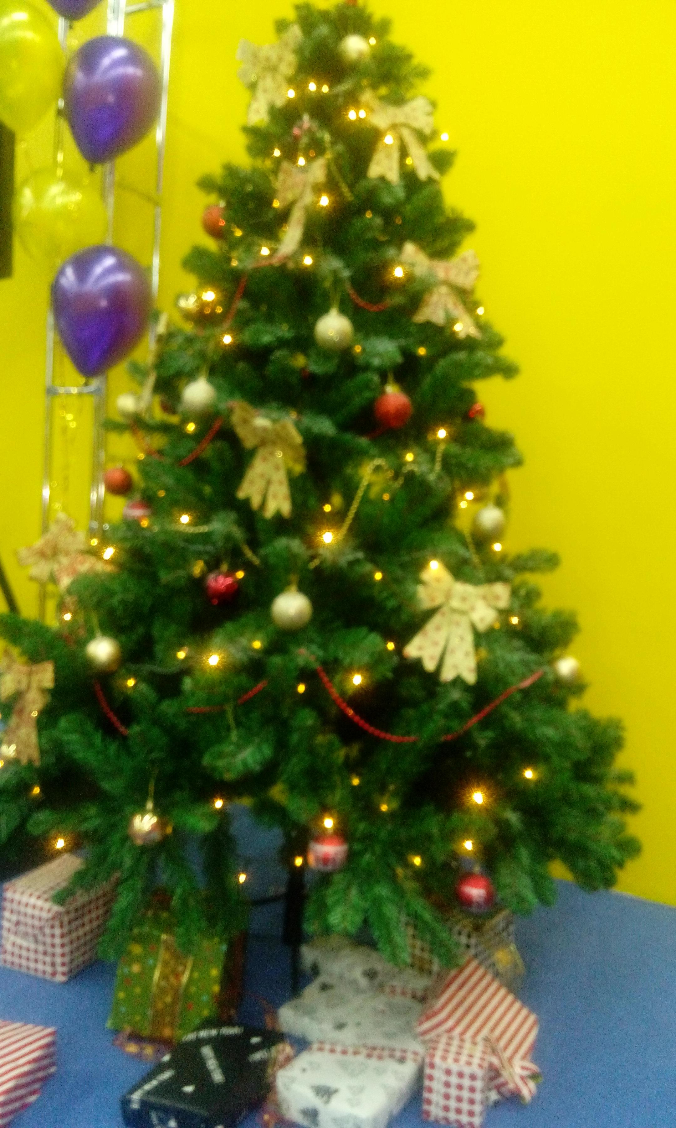 Зеленая Красавица. Блиц: Ну и елка!