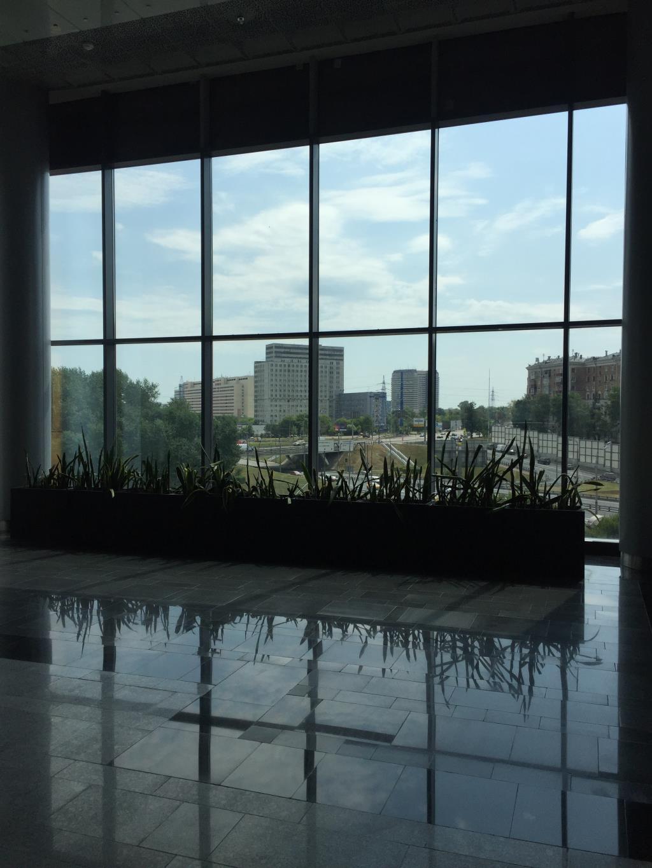 Красавица Москва. Блиц: окна
