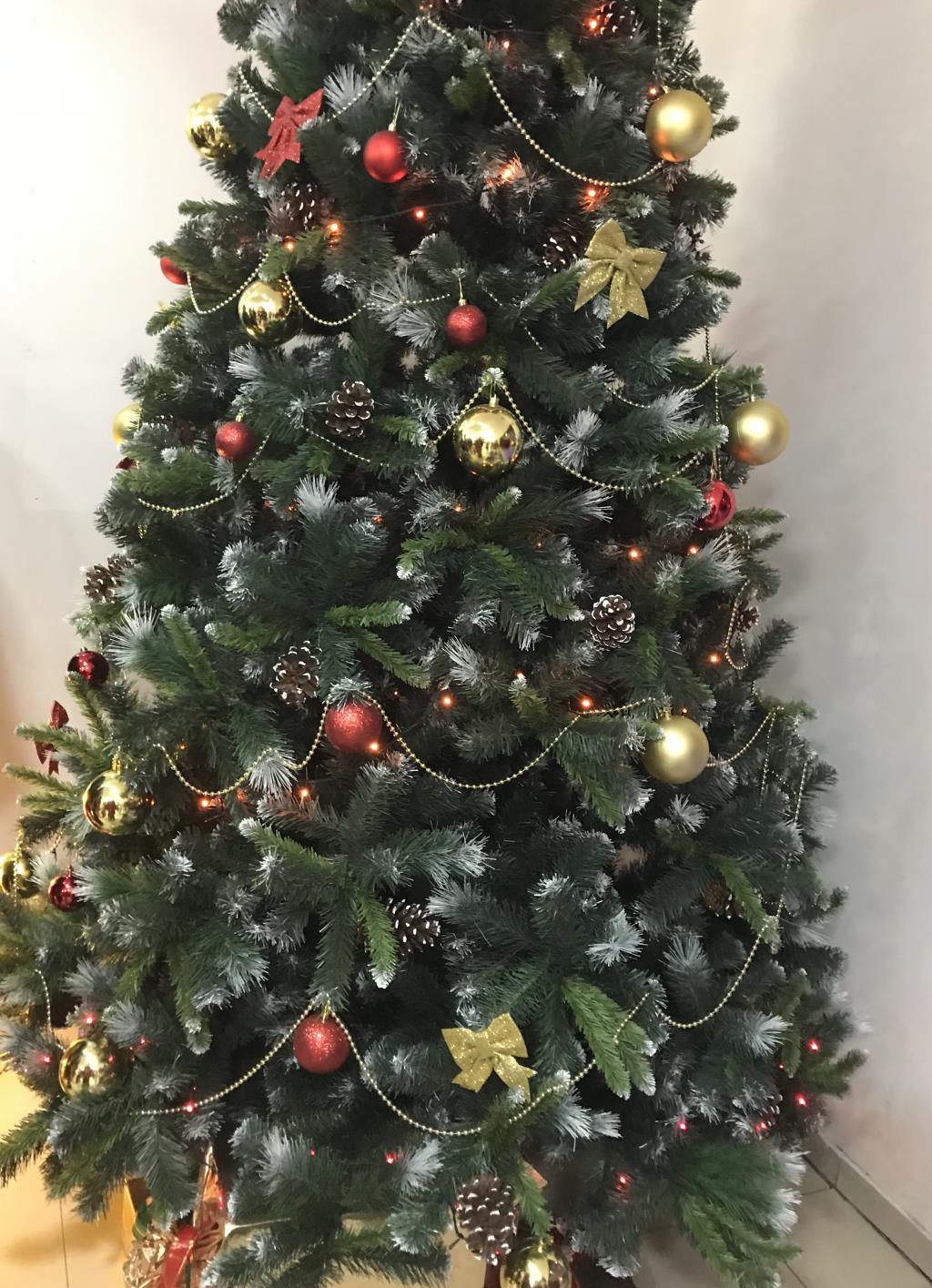 Наше новогоднее чудо. Блиц: Ну и елка!