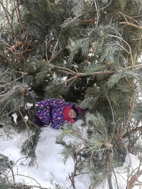 Зимний шалаш . Веселая зима