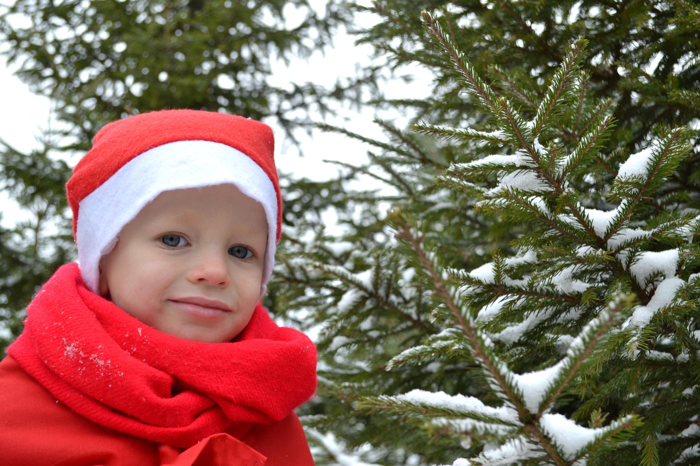 Молодой Мороз!. Веселая зима