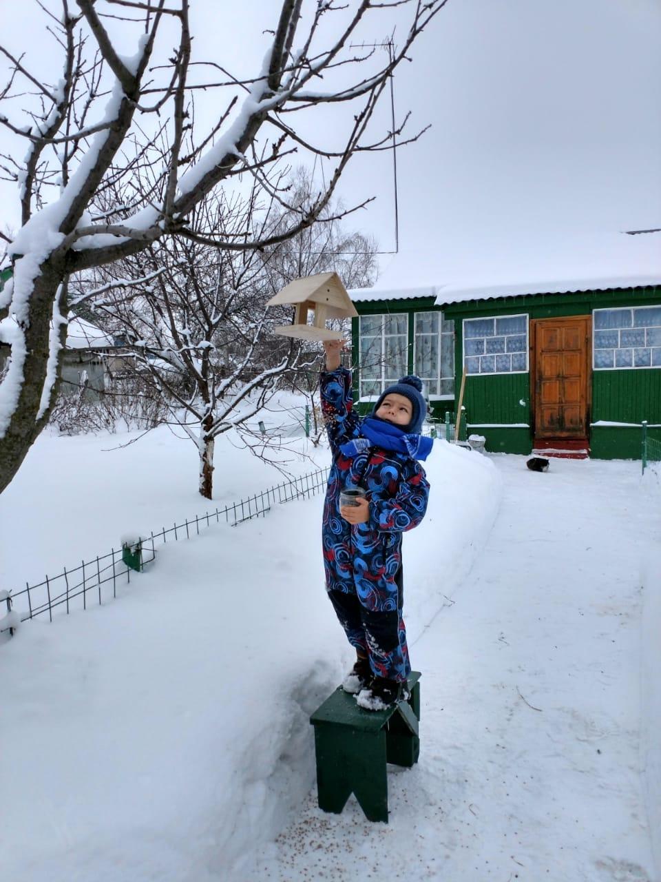 Покормите птиц зимой!. Веселая зима