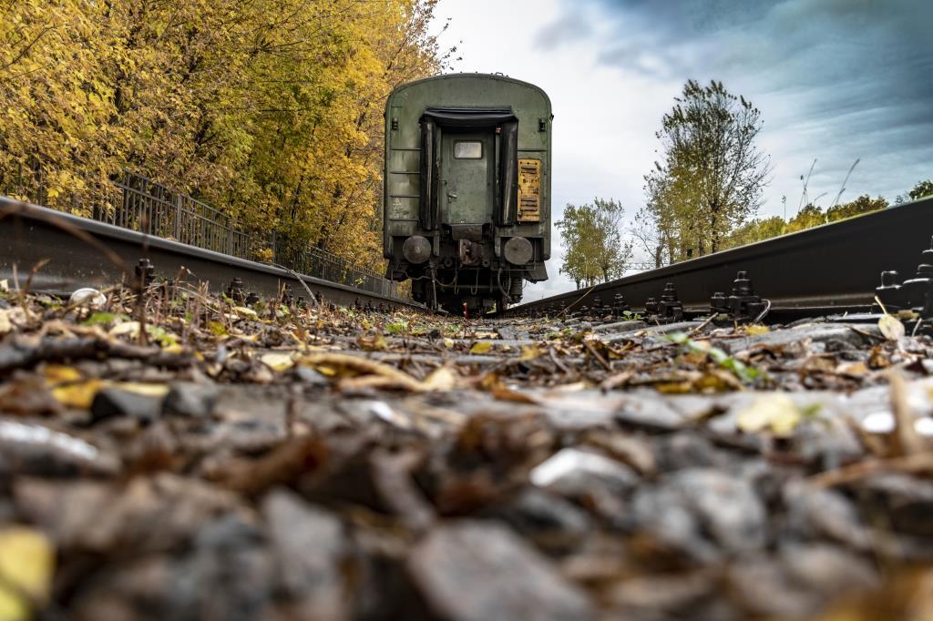 Поезд в осень. Блиц: яркая осень