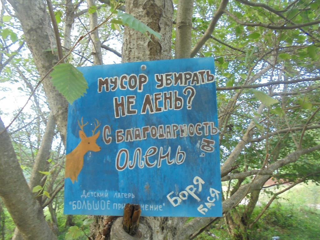 В лесу не сорят!!!. Блиц: вывески и таблички