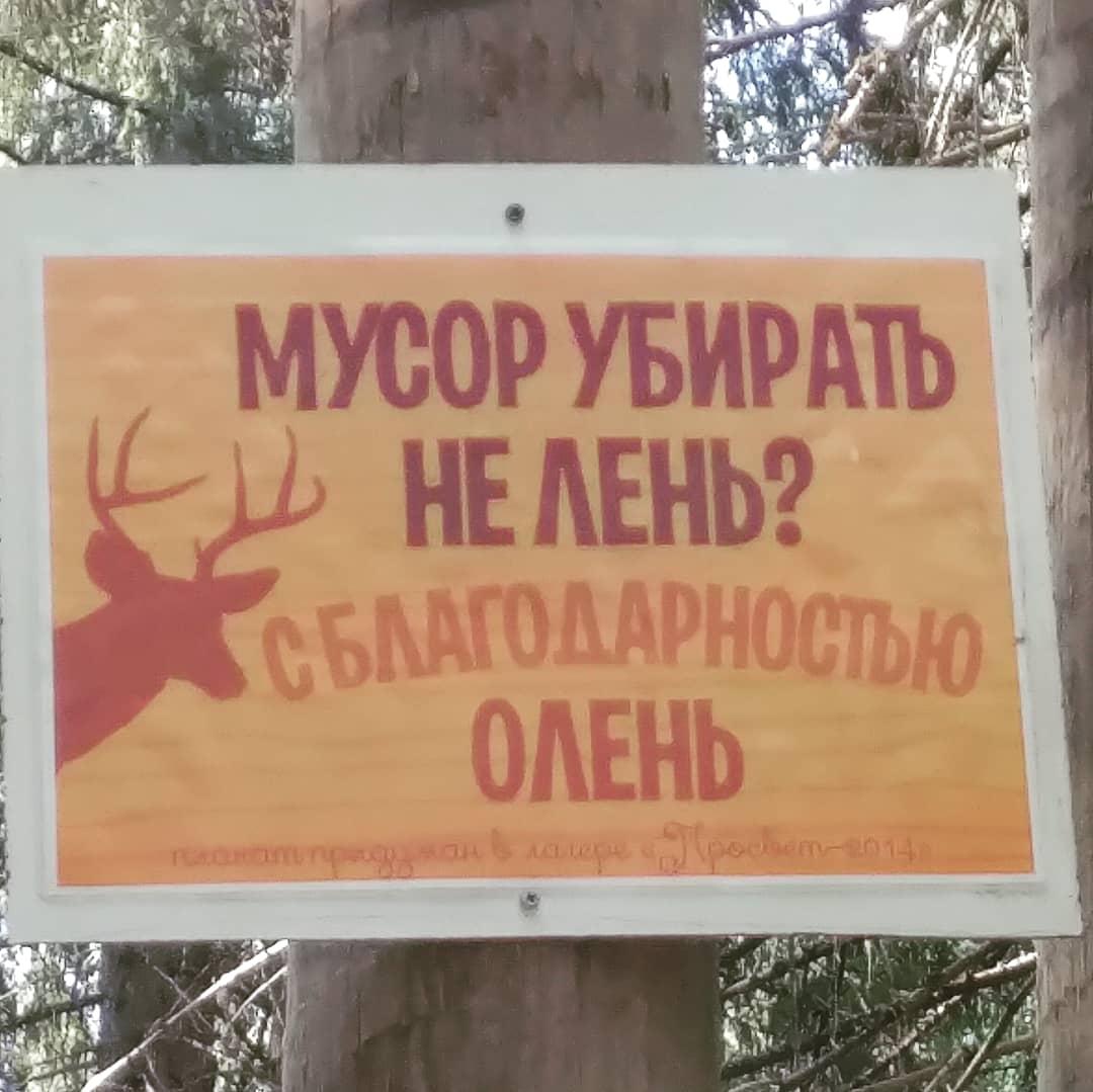 Лесные таблички. Блиц: вывески и таблички
