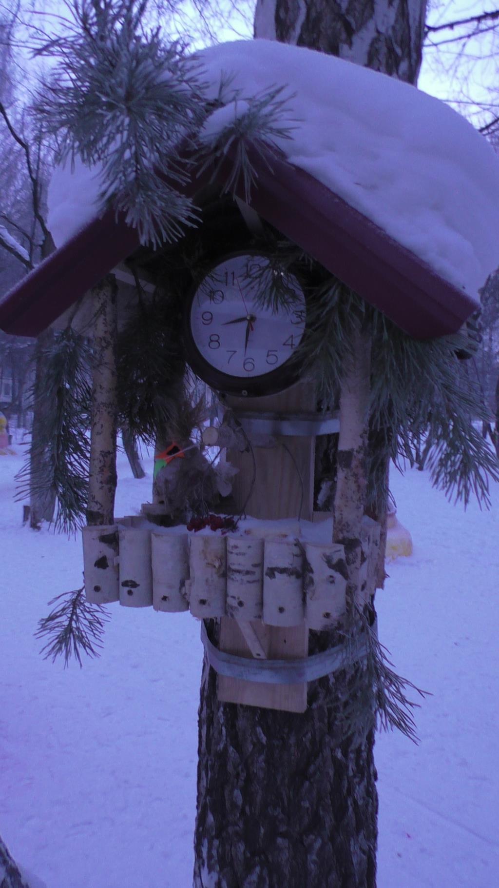 зимняя столовая для птиц готова к открытию. Блиц: из дерева