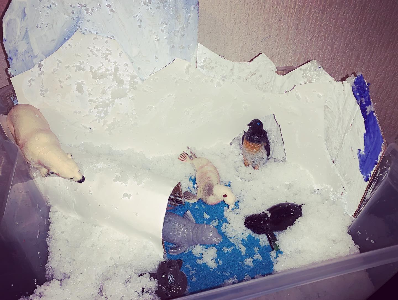 Северный полюс. Блиц: очарование Нового года