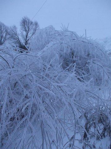 Ледяное царство. Блиц: лед