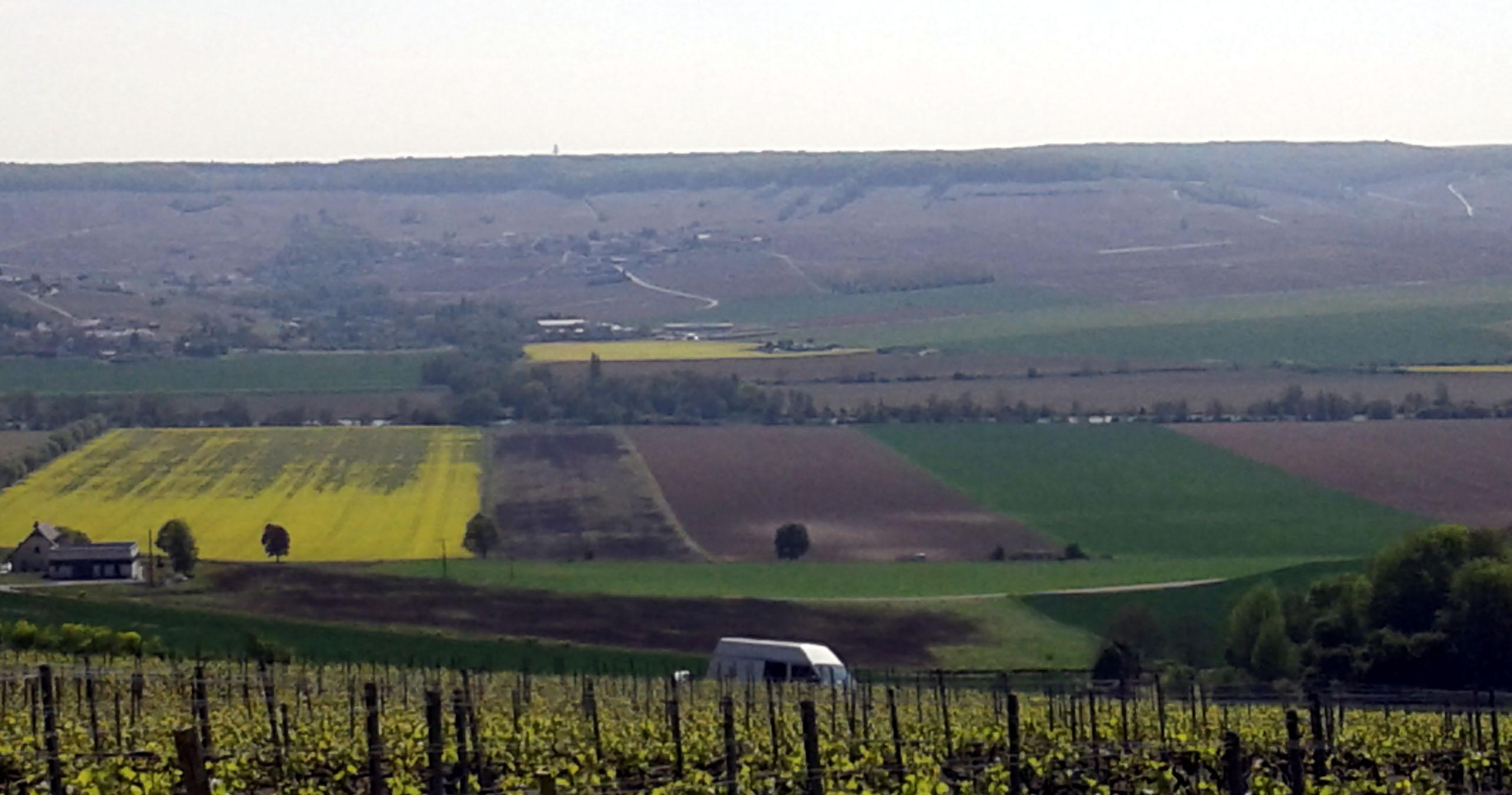 Разноцветные полосы полей Шампани (Франция). Блиц: полосы