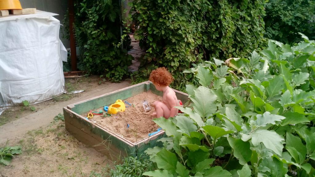 Песочница от любимого деда, любимое место на даче.. Учимся, играя
