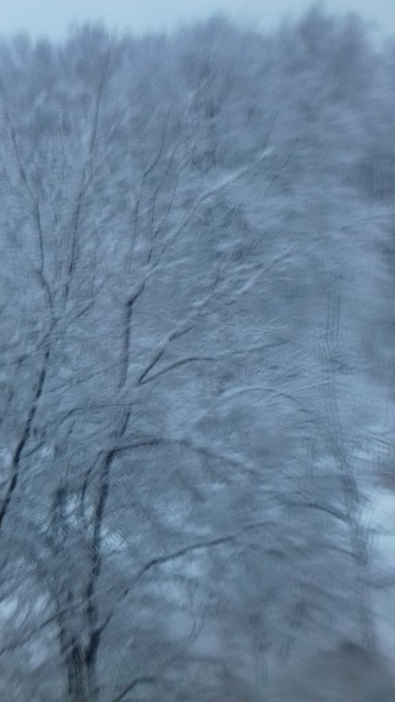 Весенние краски с зимним пейзажем снега. Блиц: март