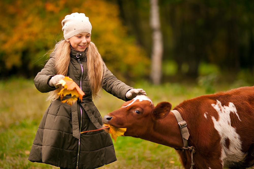 Маме с папой помогу - я теленка накормлю. Настоящая хозяйка