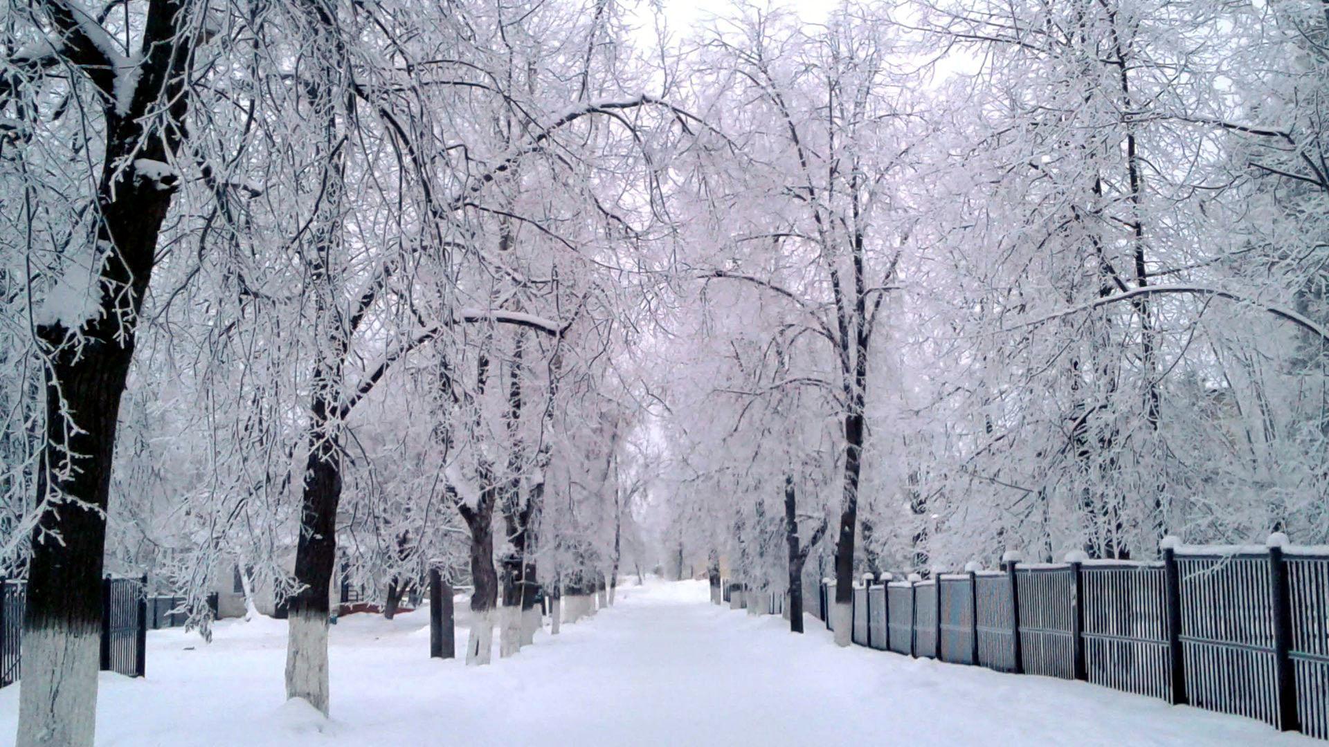 Однажды зимним утром. Блиц: улицы