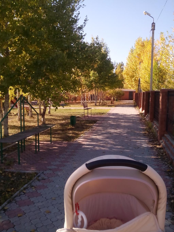 Осенняя улица. Блиц: улицы