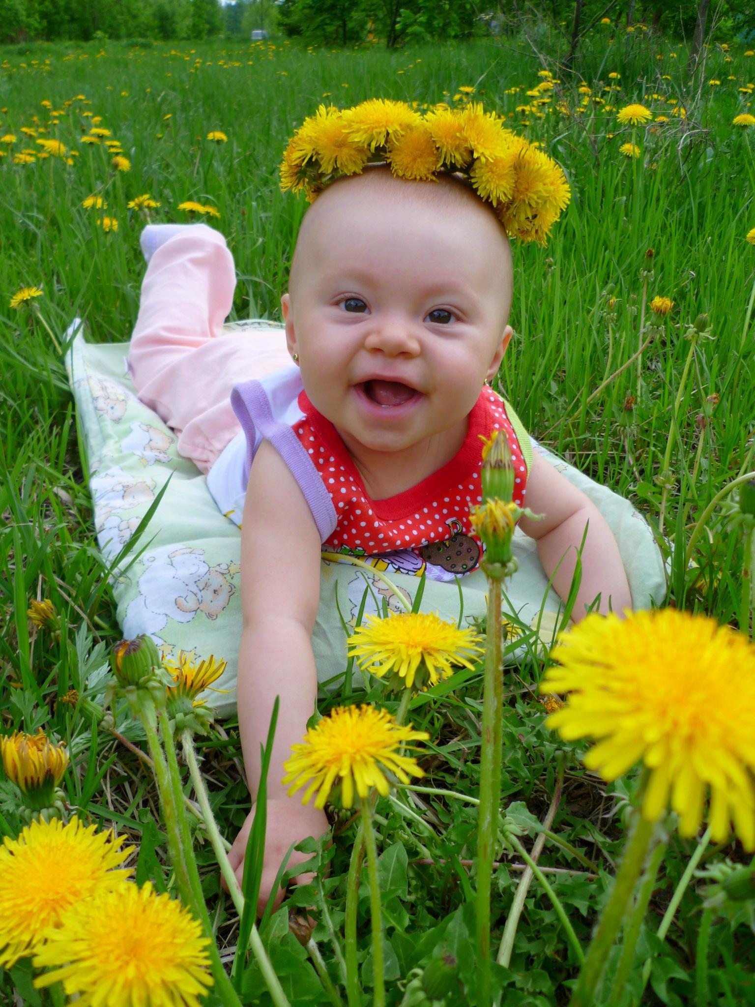 Одуванчиковая весна. Весеннее настроение
