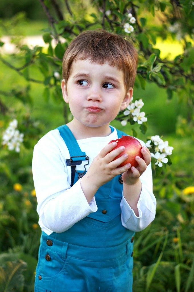 Яблоко раздора. Весеннее настроение
