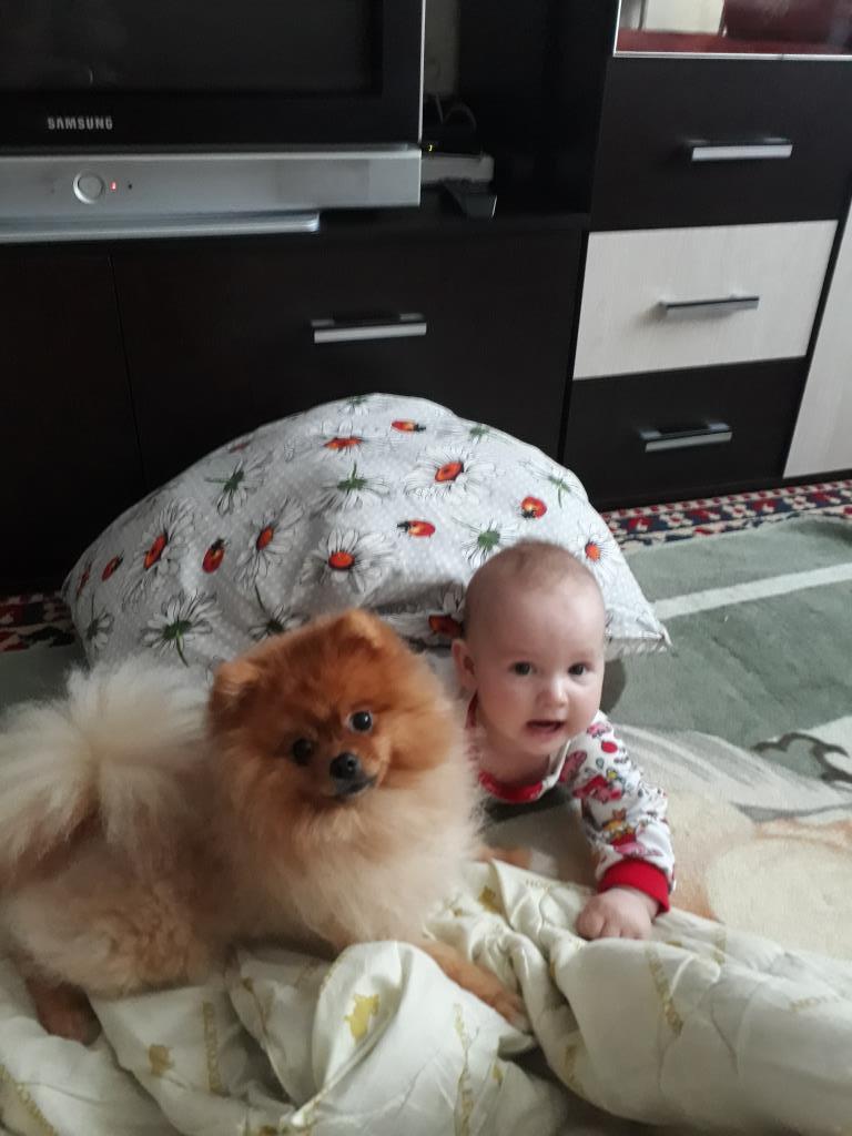 Полина с другом Бакс. Моя собака