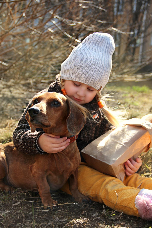 Верные друзья. Моя собака
