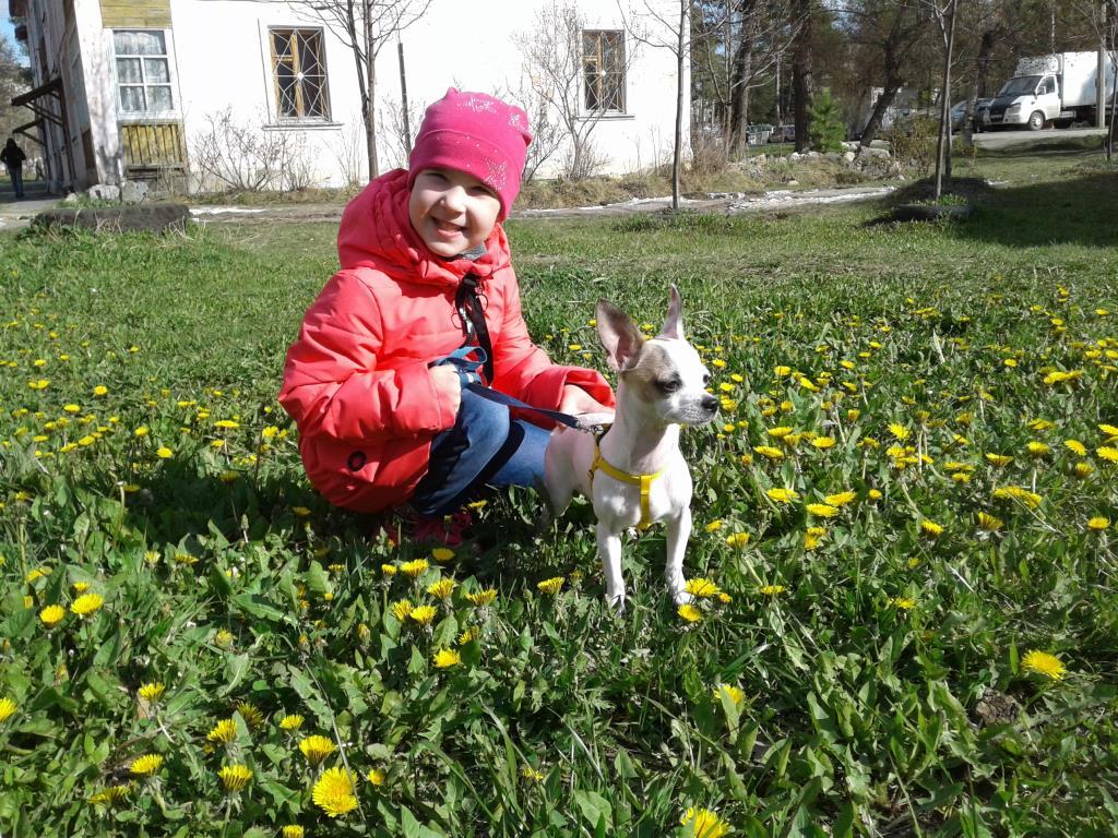 Я и мой Юки Хо. Моя собака