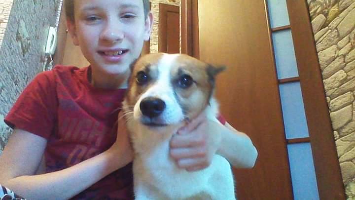 Любимый сын с любимой собачкой. Моя собака