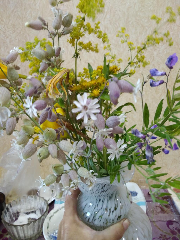 Какой прекрасный получился букет !. Блиц: полевые цветы
