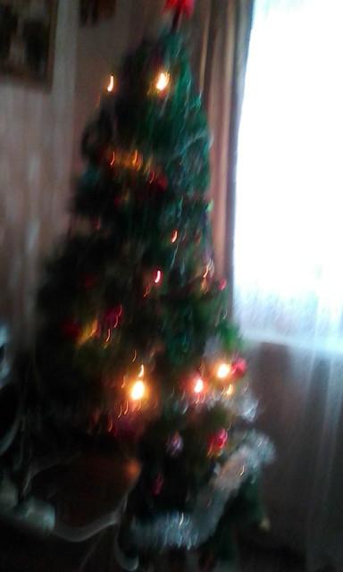 Ёлка - главный символ Нового года!. Блиц: очарование Нового года