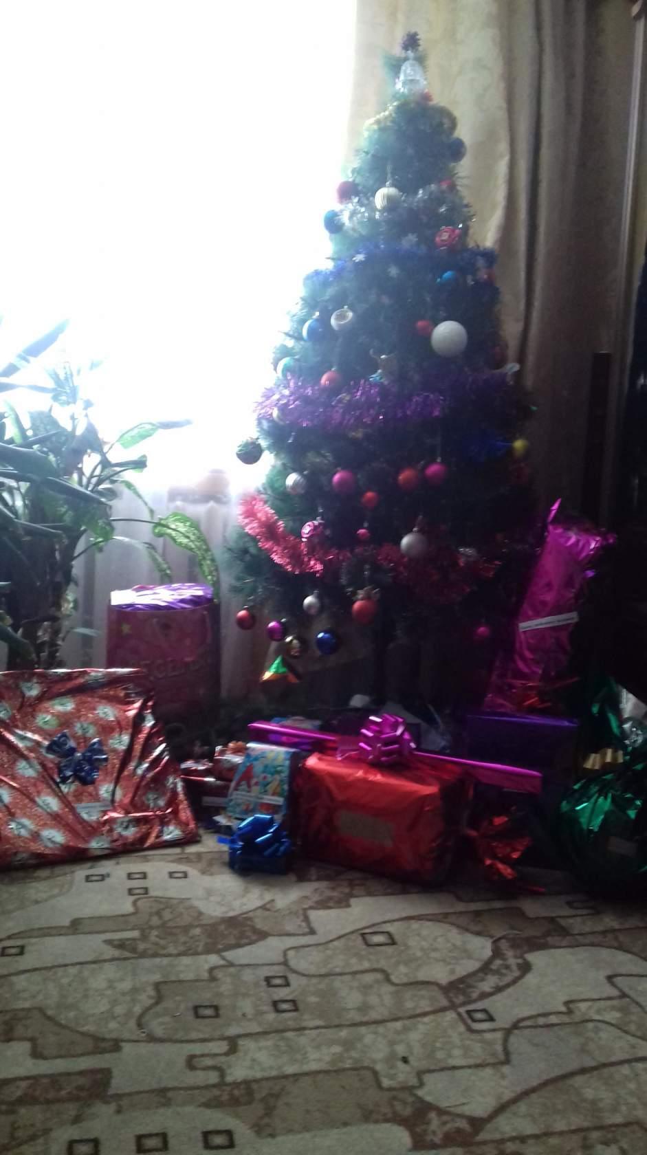 Дед Мороз заходил!. Блиц: очарование Нового года