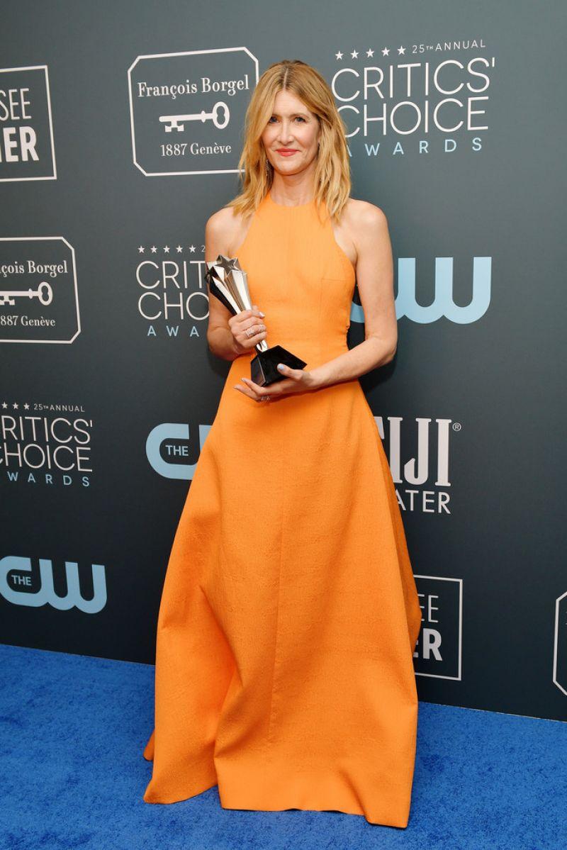 Лора Дерн приз кинокритиков 2020