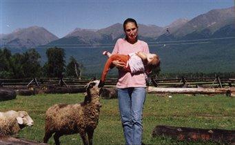 Любопытная овечка