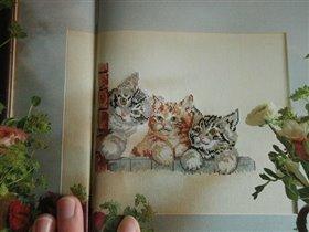 Три котенка на окошке