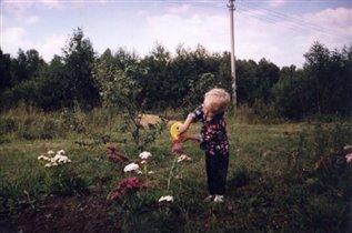 цветы надо поливать...