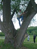 Валера на дереве