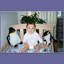 а это Максимка со своими друзьями -пингв