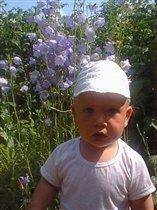 Хороши у нас цветы:)