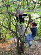 Дети на деревьях:-)) Алиса и ???